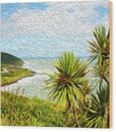 Raglan Coastline Wood Print