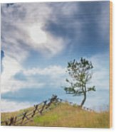 Rail Fence And A Tree Wood Print