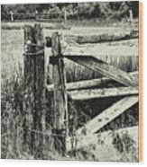 Rail Fence Wood Print