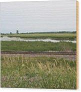 Rail Refuge Wood Print