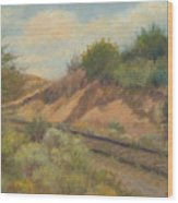 Rail To Lamy Wood Print