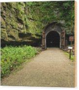 Rail Trail Tunnel 2 A Wood Print