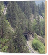 Railroad And Tunnels On Mountain Wood Print