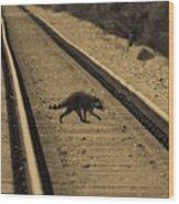Railroad Bandit Wood Print