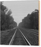 Railroad To Nowhere Wood Print