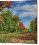 Railroad Tracks At Grand-pre National Historic Site Wood Print