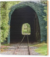 The Railway Passing Through The Tunnel To Meet The Light Wood Print