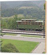 Railway Station On Mountain Vintage Wood Print
