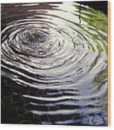Rain Barrel Wood Print by Carl Purcell