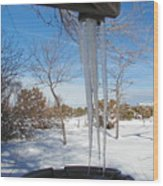 Rain Barrel Icicle Wood Print