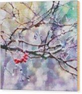 Rain Berries Wood Print
