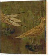Rain Bird Hunt Wood Print