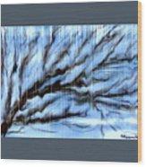 Rain Wood Print by Karunita Kapoor