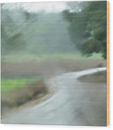 Rain Over Lachish Wood Print