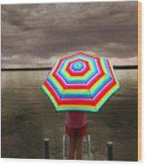 Rain Rain Go Away Wood Print