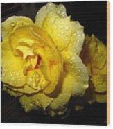 Rain Soaked Yellow Rose Wood Print