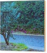 Rain Storm On Lake Linda Wood Print