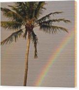 Rainbow And Palm Tree Wood Print