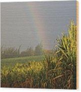 Rainbow Arching Into Field Behind Stream Wood Print