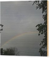 Rainbow Between The Trees Wood Print