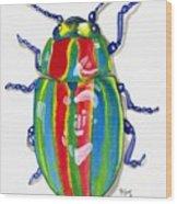 Rainbow Bug Wood Print