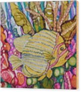 Rainbow-colored Sunfish Wood Print