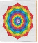 Rainbow - Crown Chakra  Wood Print by David Weingaertner