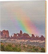Rainbow Down Wood Print