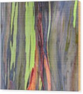 Rainbow Eucalyptus 13 Wood Print