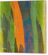 Rainbow Eucalyptus 5 Wood Print