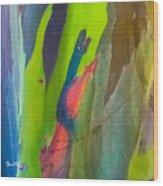 Rainbow Eucalyptus 7 Wood Print