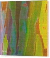 Rainbow Eucalyptus 8 Wood Print