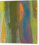 Rainbow Eucalyptus 9 Wood Print