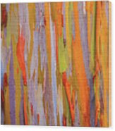 Rainbow Eucalytpus Wood Print