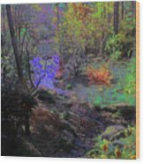 Rainbow Fairies Sweep Across The Landscape Wood Print