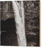 Rainbow Falls 2 - Sepia Wood Print