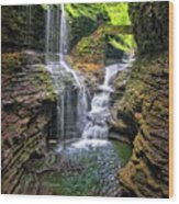 Rainbow Falls In Watkins Glen Wood Print
