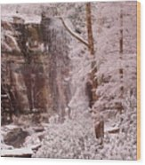 Rainbow Falls Smoky Mountain National Park -- Painted Photo. Wood Print by Christopher Gaston