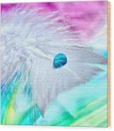 Rainbow Flight Wood Print