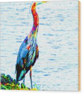 Rainbow Heron Wood Print