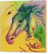 Rainbow Horses And The Pearl Of Light Wood Print