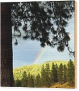 Rainbow In Pine Country Wood Print