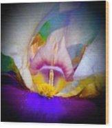 Rainbow In The Iris Wood Print