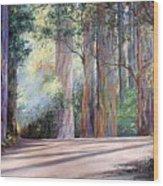 Rainbow Lane Wood Print