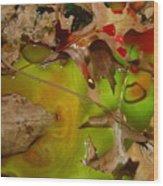 Rainbow Leaves 3 Wood Print