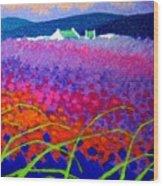 Rainbow Meadow Wood Print by John  Nolan