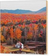 Rainbow Of Autumn Colors Wood Print