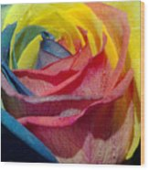 Rainbow Of Love 2 Wood Print by Karen Musick