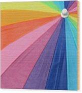 Rainbow On The Beach Wood Print