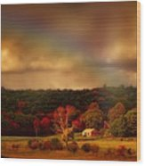 Rainbow Over Countryside Wood Print